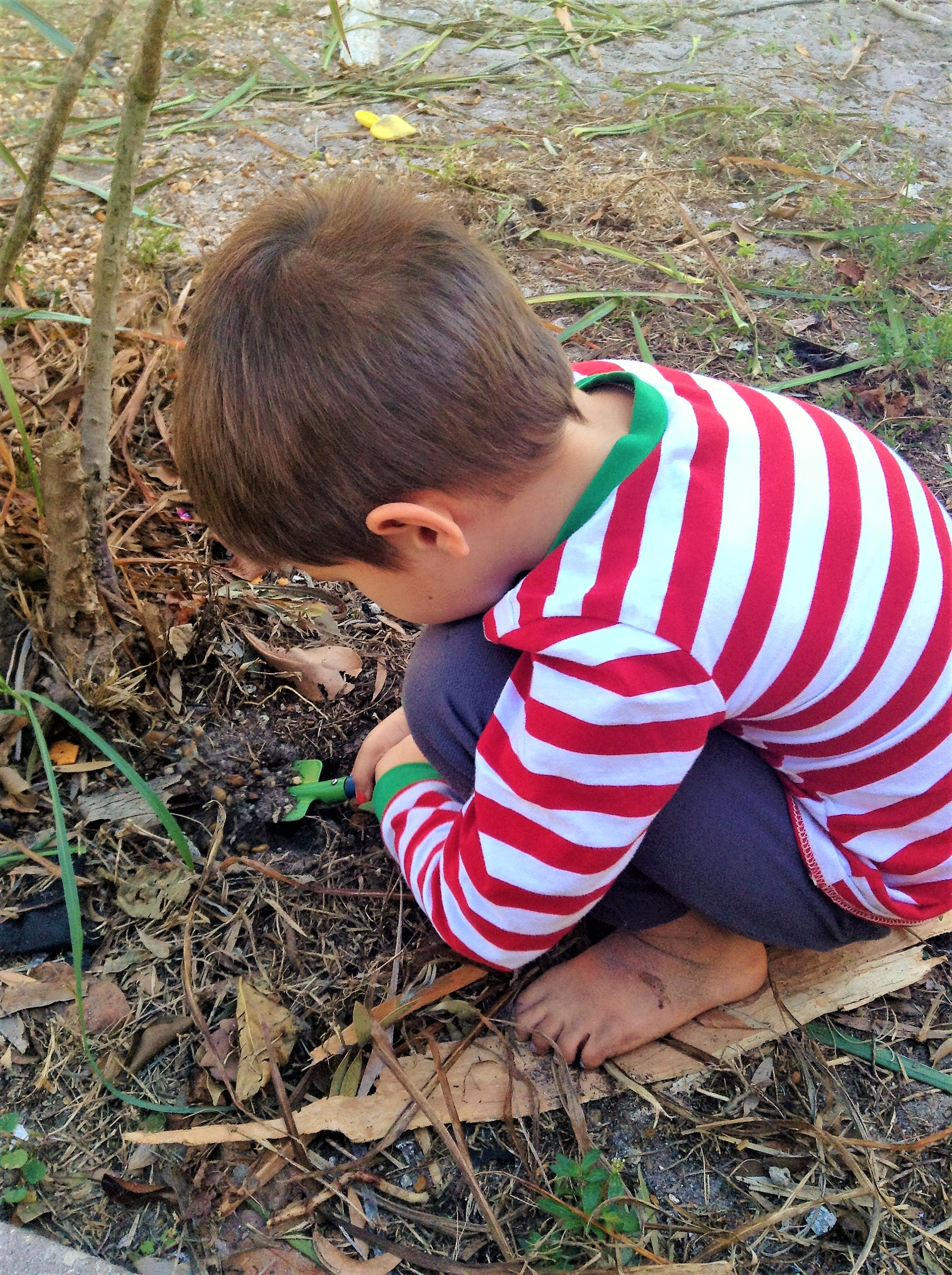 Child led learning with hands-on activities and eclectic homeschool curriculum