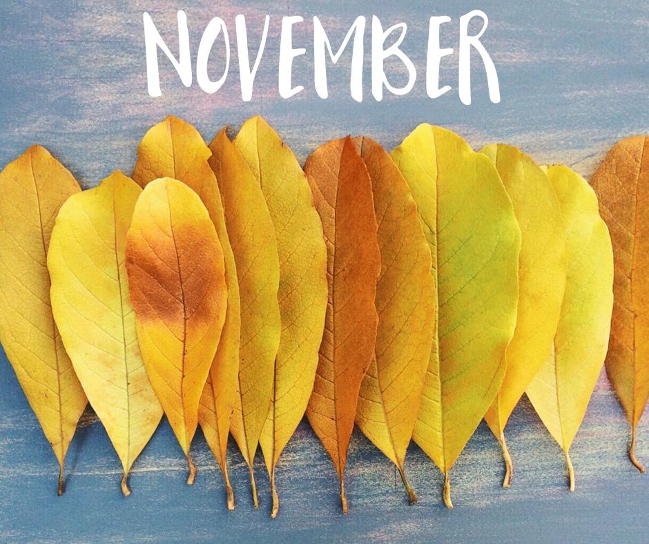 November Homeschool Activities