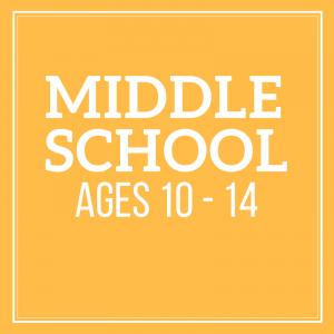 Homeschool activities for middle school