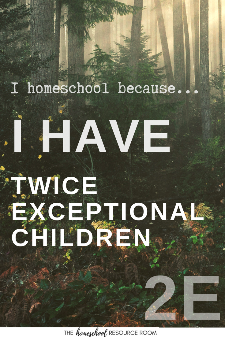 Twice exceptional children, sometimes known as 2E, have some special challenges when it comes to their education. Read Ginny's story about why she chooses to homeschool her children.