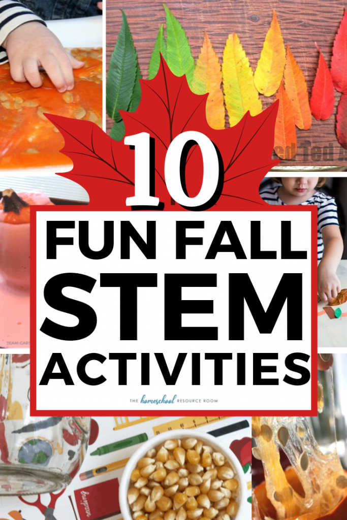 10 FUN Fall STEM Activities! Hands-on science experiments, projects, and exploration for the changing season.