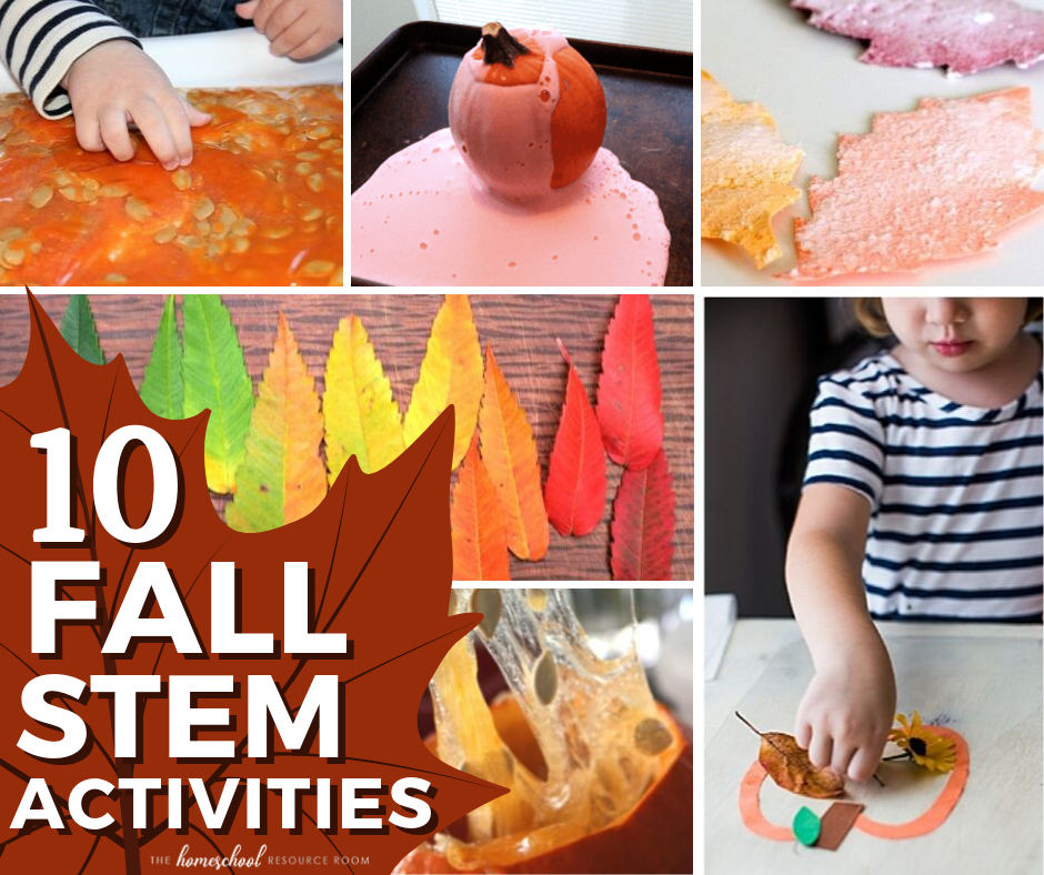 Ten fall STEM activities! Hands-on science experiments, projects, and exploration for the changing season.