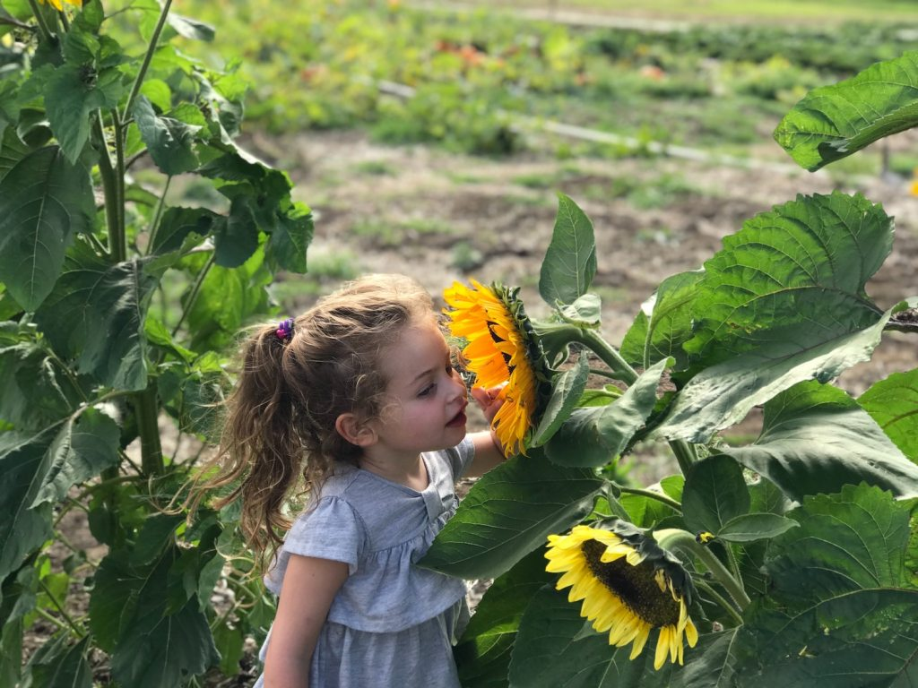 10 more educational outdoor activities
