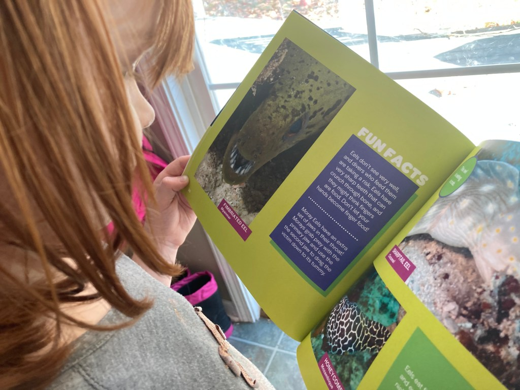 Books about marine life for kids (1)