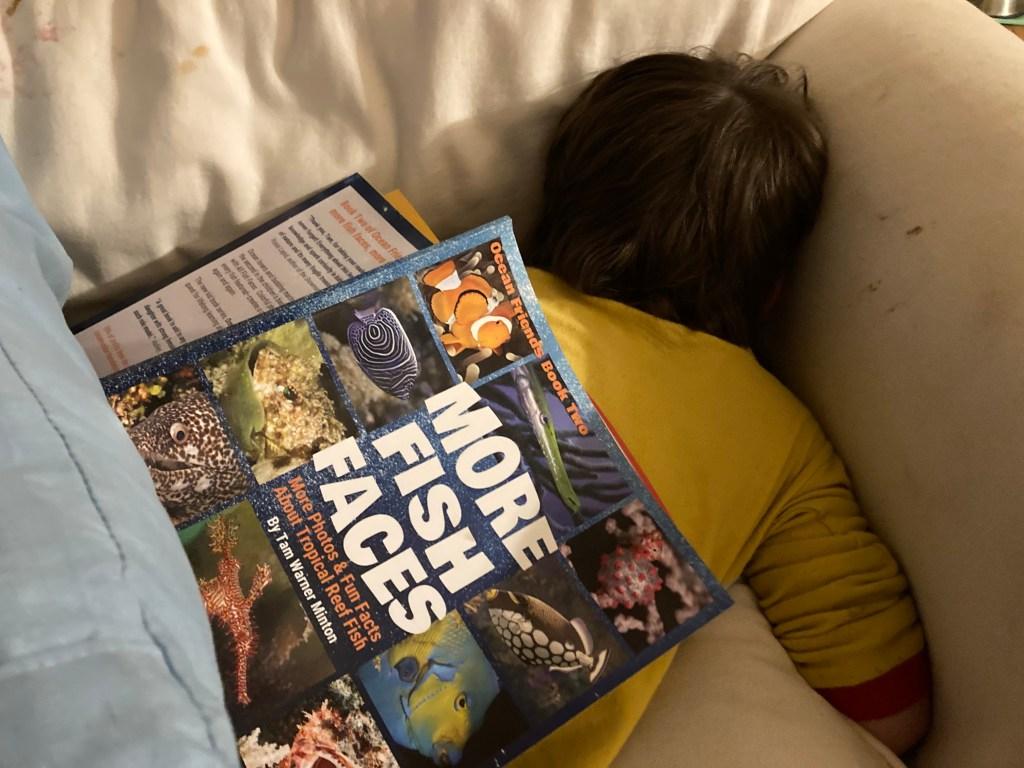Marine Life for Kids
