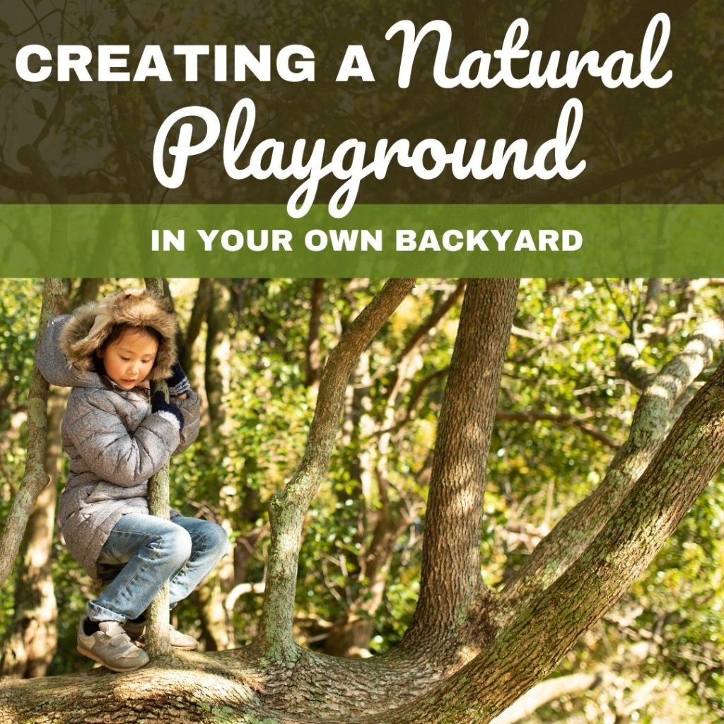 Backyard natural playground: Setting up a space for experimentation and play!