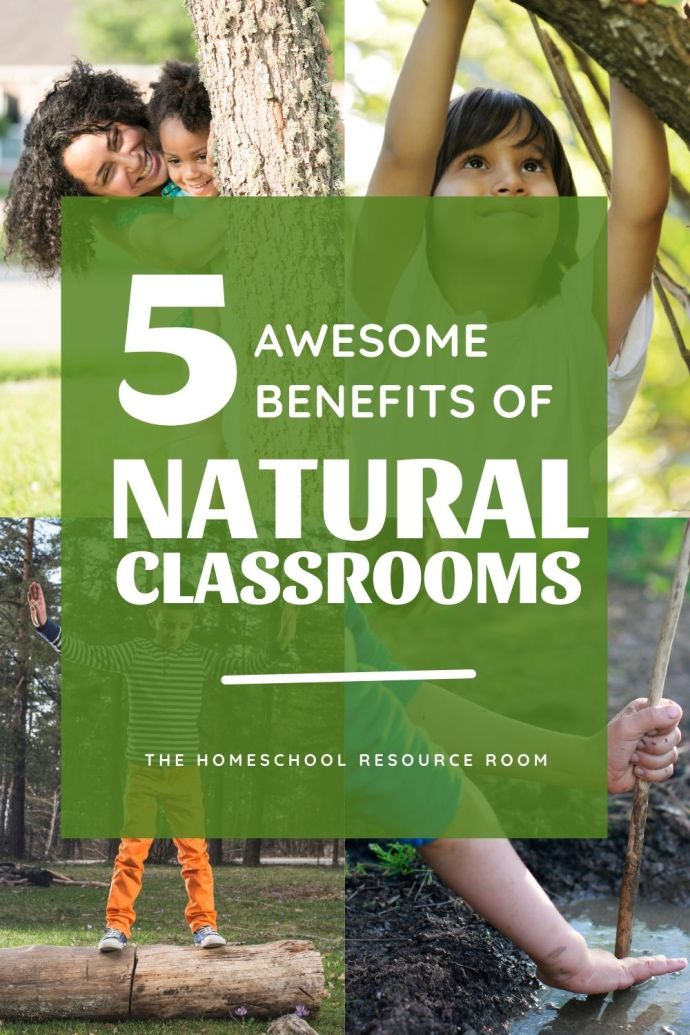 5 awesome benefits of nature classrooms. Natural classrooms have many benefits. See how a new spin on your learning environment can impact your homeschool! #homeschool #natureclassroom #naturalclassroom